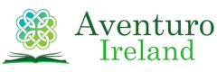 The Irish Education Academy